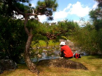 白鳥公園4.jpg
