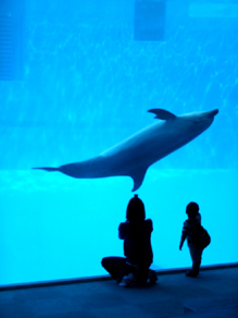 名古屋港水族館1.jpg