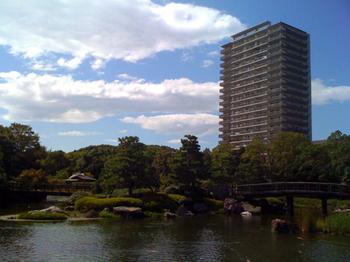 白鳥公園2.jpg